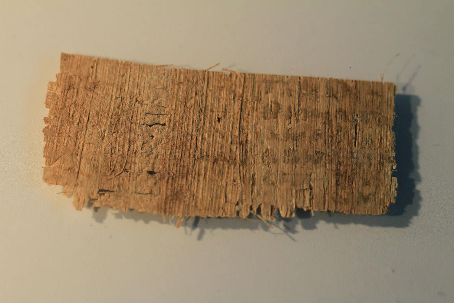 JESUS WIFE - PAPYRUS FRAGMENT BACK